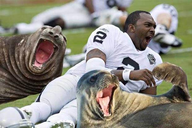 jamarcus-seals