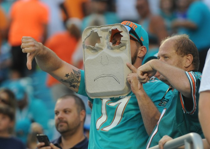 dolphins-fans_27112015