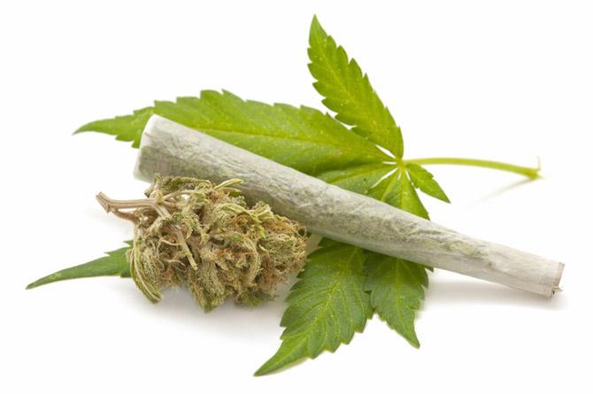 marijuana-controle-positif