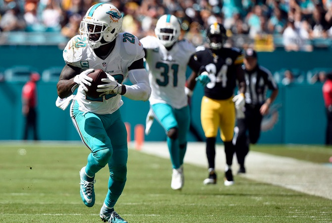 reshad_jones_dolphins_19102016